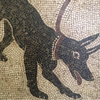 10 roman mosaics from pompeii of a dog at the entrance of a home in italy